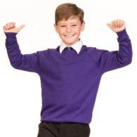 Product8-purple jumper